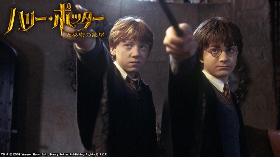 ハリー・ポッターと秘密の部屋のワンシーン